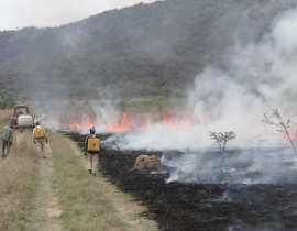 Firebreaks undertaken at the UmPhafa Reserve