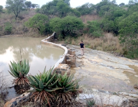 Creating water sources at Colchester Zoo's UmPhafa Reserve!