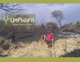 UmPhafa Reserve donations